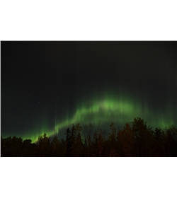 Aurora Viewing from Yukon