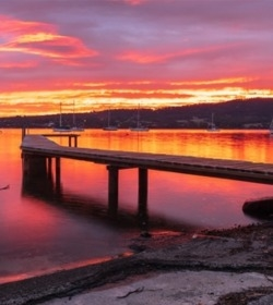 Experience Tasmania  with Hobart