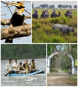 WILDLIFE TOUR OF ASSAM